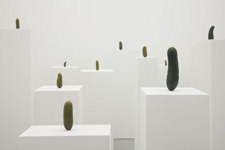 erwin-wurm-kunstmuseum-wolfsburg-designboom-02